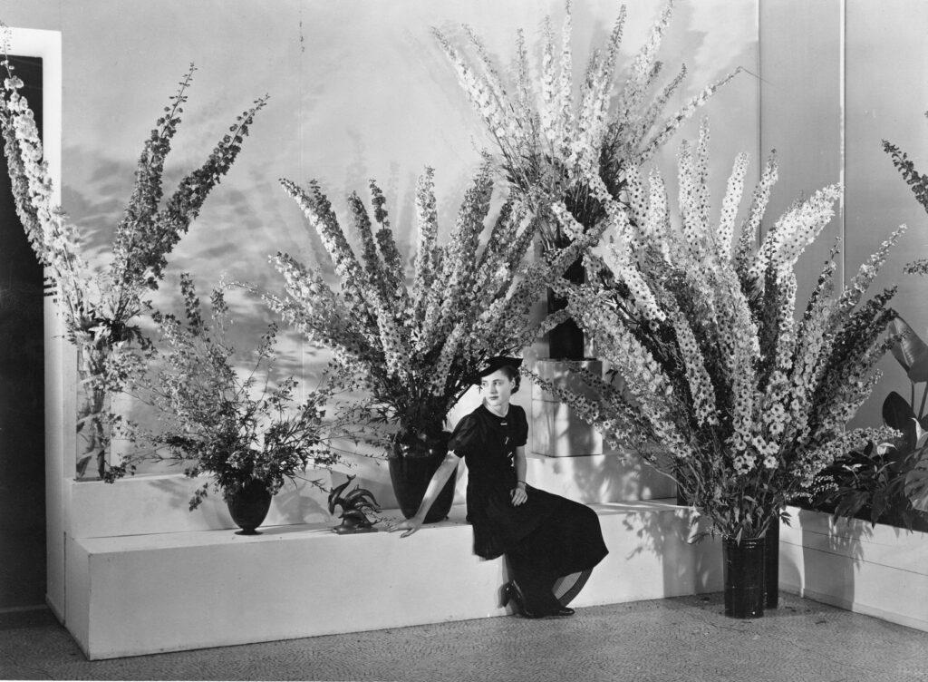 moma: edward steichen's delphiniums, 1936